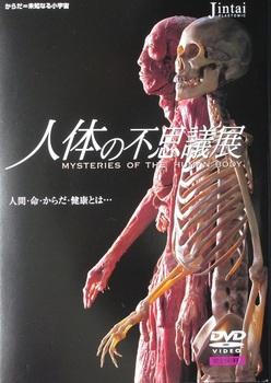 人体の不思議展.JPG